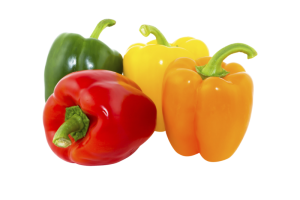PerfoTec LinerBag - Bell Pepper