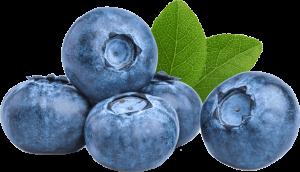 PerfoTec LinerBag Blueberries