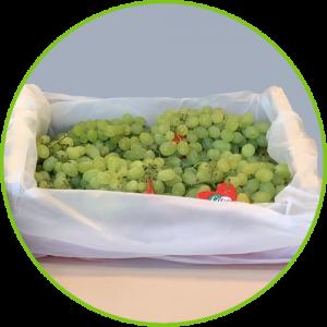 PerfoTec LinerBag Grapes
