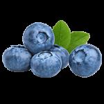 Blueberries and PerfoTec LinerBag