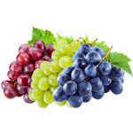 Grapes and PerfoTec LinerBag