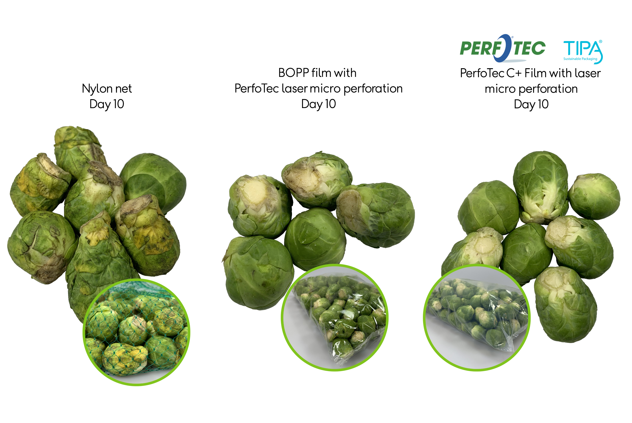 Brussels Sprouts and PerfoTec TIPA technology