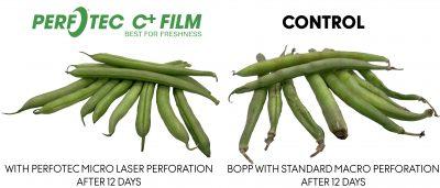 Green Beans - PerfoTec vs Standard packaging